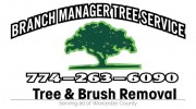 Branch Manager Tree Service LLC