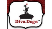 Diva Dogs Salon & SPA