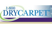 1 800 Dry Carpet Houston