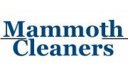 Mammoth Cleaners